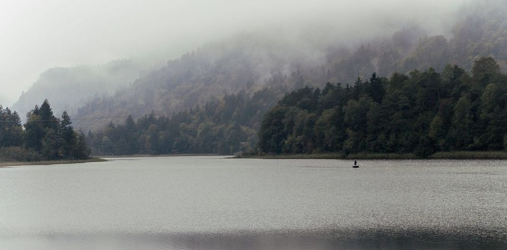 Alone People And Places. Alone Time Fishing Boat Lake Lake View See Lanscape Outside Boat Fishing Sport Fishing Foggy Morning Foggy Nebel Mountain Berge Österreich