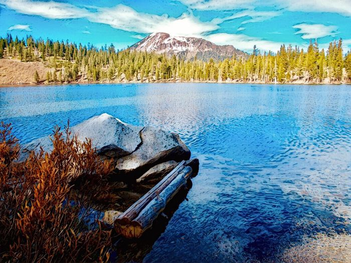 Mammoth Mountain Eastern Sierras Mammoth Lakes, CA Lake George Water Beauty In Nature Tranquility Scenics - Nature Tranquil Scene Tree Plant Mountain