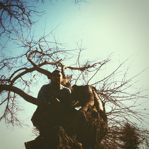 Llill_nigga On Tree Qanoon On The Tree.