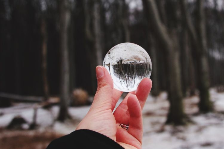 Close-up of person holding crystal ball in forest during winter