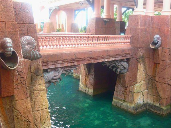 Tropics Tropical Paradise Water Bridge Man-made Structure Enjoying Life Water Reflections Bahamas Tropical Climate Travel Atlantis . Travel Water.