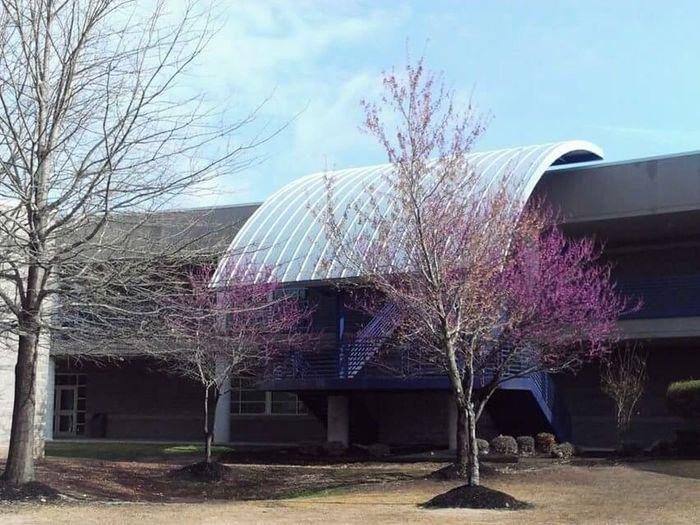 Rogers Nwarkansas School