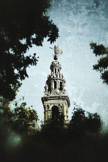 Tree Architecture Sky Built Structure No People Silhouette Travel Destinations Night Outdoors Building Exterior Politics And Government Alcazar De Seville Catedral De Sevilla Giraldillo