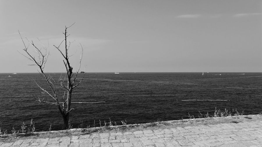 Horizon Over Water Outdoors Sea Standing