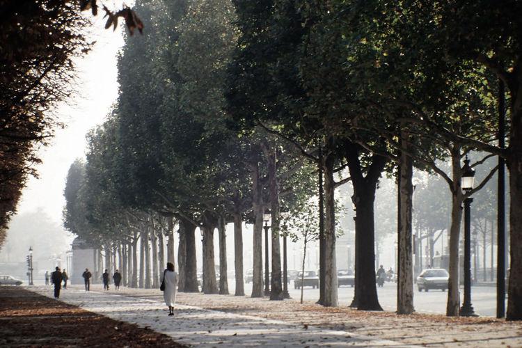 People walking in champs-élysées