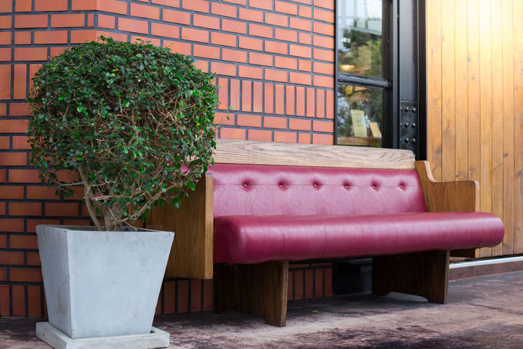 Luxury seat a leather sofa with a plant shape on outside restaurant Absence Architecture Building Exterior Built Structure Chair Day Flower Pot Front Or Back Yard Growth House Houseplant Nature No People Outdoors Plant Potted Plant Seat Table Wall Wall - Building Feature Window Wood - Material