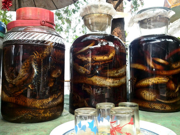 Laos, Luang Prabang Travel Photography Streetphotography Travel Destinations Outdoors Snake Wine