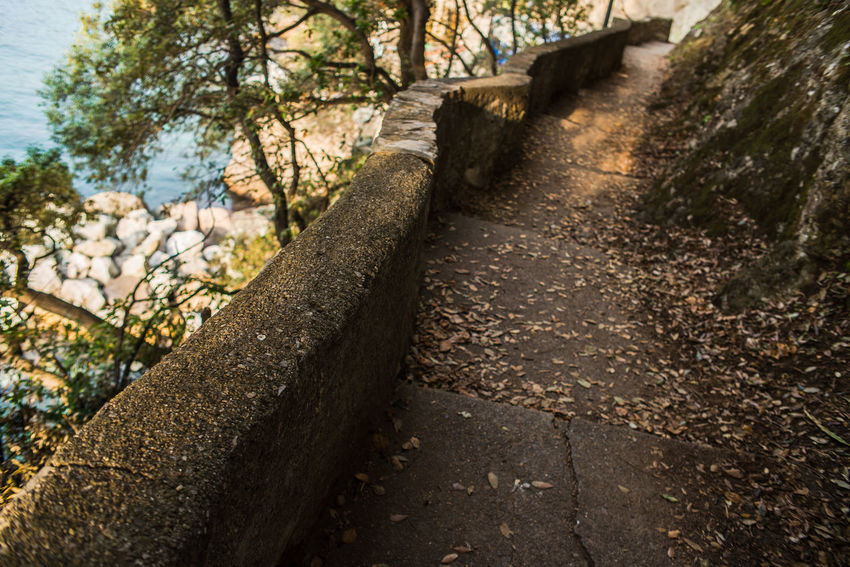 Autumn Dry Leaves Going Down Perspective Porto Pidocchio (Liguria) Stairs Steps Adventure Day Down Liguria Nature No People Outdoors Picturesque Portrait Promontory Punta Chiappa Scenics Sea Stones Tourism Tree