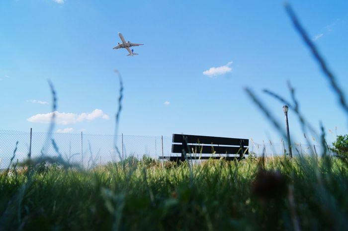 Airplane Grassy Grass Park Skyporn Sky Blue Sky Flying Neighborhood Map