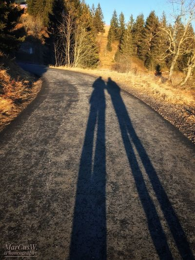 Long shadowy legs Tree Shadow Sunlight Real People Rear View Focus On Shadow Outdoors Leisure Activity Day Nature One Person The Way Forward Men Beauty In Nature Mammal People Adult