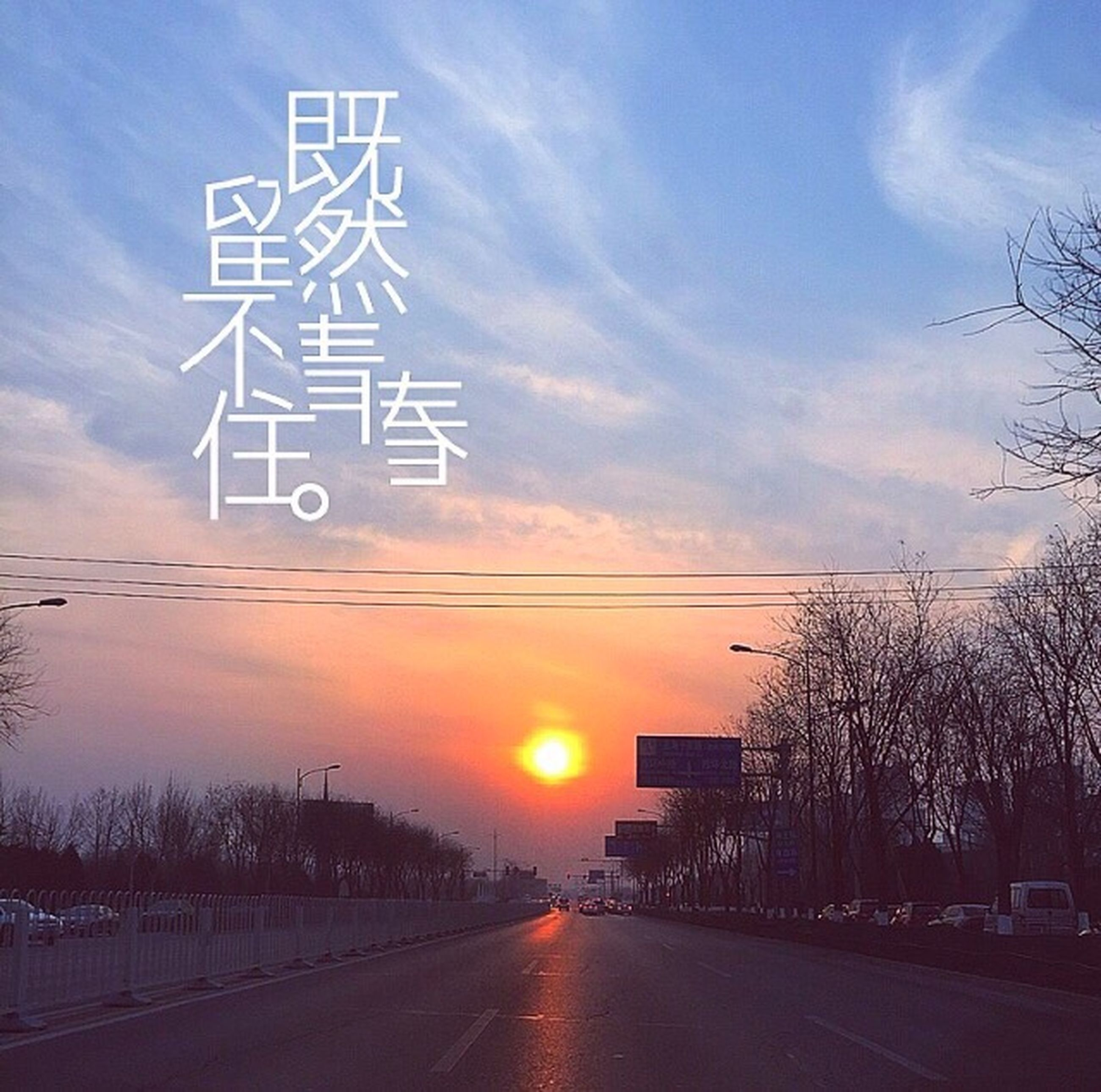 sunset, road, the way forward, sky, transportation, communication, road sign, text, orange color, western script, tree, guidance, information sign, road marking, street, cloud - sky, diminishing perspective, arrow symbol, sign, directional sign