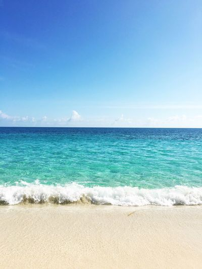 Ocean Atlantis, Bahamas.  Carribean