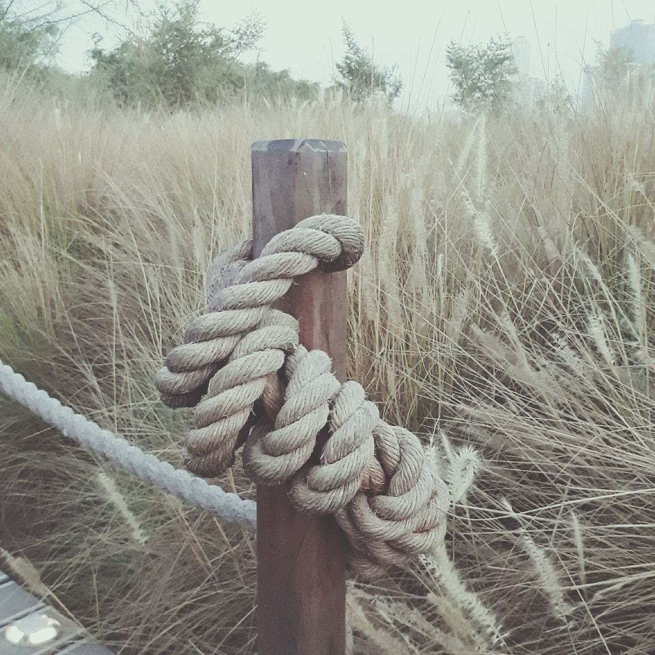 rope, strength, tied up, no people, tied knot, connection, safety, outdoors, day, grass, close-up