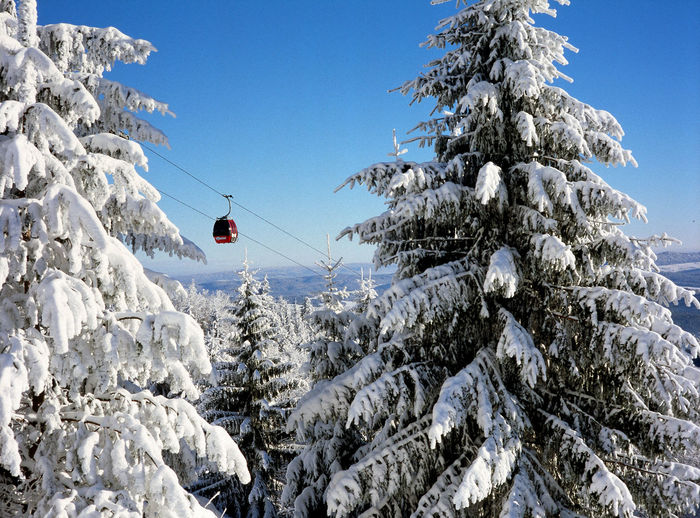 Beauty In Nature Clear Sky Cold Temperature Day Frozen Idyllic Jaworzyna Mountain Mountain Peak Nature Non-urban Scene Outdoors Poland Season  Ski Skiing Snow Snowcapped Mountain Spruce Tranquility Transportation Tree Weather White Color Winter