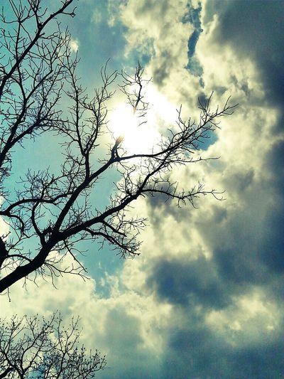 Nature Clouds Sun Simplebeauty