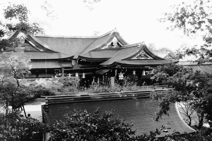 Taking Photos Enjoying Life Hello World 京都 ELMARIT-M 28mm F2.8 Blackandwhite モノクロフィルム Acros100 Film Photography BESSA-T