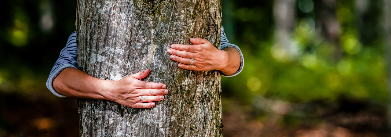 Woman hugging tree trunk outdoors