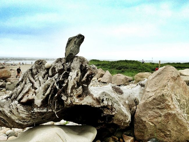 Driftwood Standing Stones