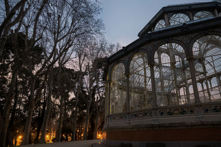Palacio de Cristal Retiro Park Crystal Palace Evening Autumn Fall Moody Dead Trees Cloudy Sunset Architecture And Art Halloween Windows Linas Was Here