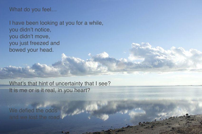 is it me? Beach Cloud - Sky Horizon Over Water Nature Outdoors Sea Seascape, Calm, Cloudy Writings,