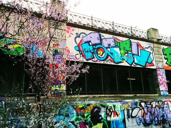the 'sprühling' has begun :) Graffiti Art Spring Vienna