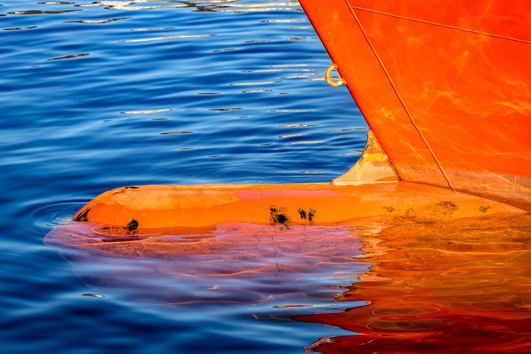 Close-up of orange blue sea
