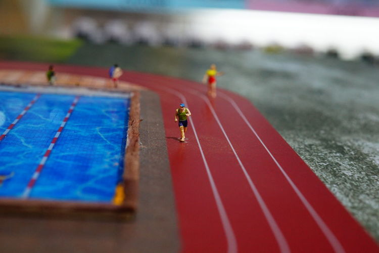 Sports Track Stadium Track And Field Event Competition Sports Race Competitive Sport Match - Sport Sport Tilt-shift Ice Hockey Ladybug Bug Damselfly Damselfly Caterpillar Housefly Insect