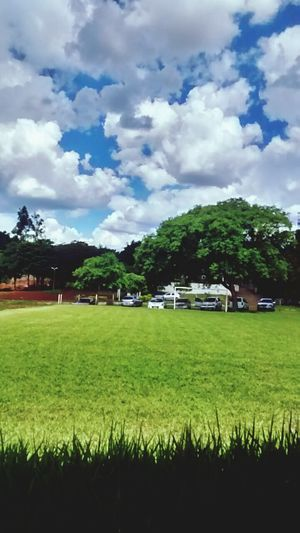 Maringá está assim ❤ Primaverando Holiday Sunday Pool Summer ☀ Vacation Cidade Verde Sun Afterlight Afternoon
