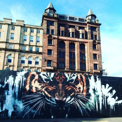 Architecture Building Exterior Built Structure City Cloud - Sky Day Eastend Grafitti Low Angle View No People Outdoors Sky Streetphotography Tiger UrbanART Urbanarts