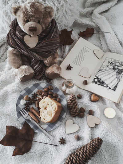 a tea with teddy Teddy Bear Teddybear Fluffy Fluffy Blanket Comfy  Cozy At Home Pic Nic Tea Time Sunday Afternoon Slice Of Cake Autumn Mood Fall Colors Fall Season Hazelnut Brown Color Spices Table High Angle View Still Life Close-up Sweet Food Food And Drink Cake Chocolate Anise