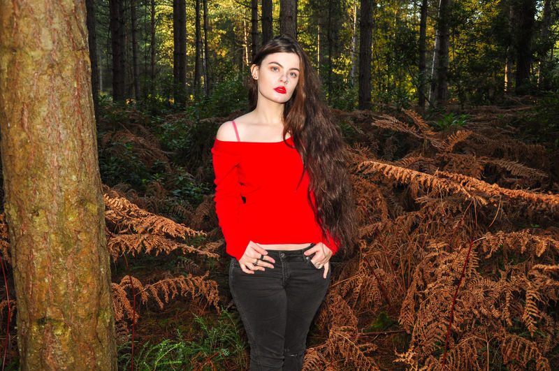 Beautiful young lady in a red jumper in a forest in the autumn Girl Millenial Young Lady Red Red Color Red Lipstick Forest Trees Beauty Beautiful Woman Beautiful Long Hair Tree Trunk Red Jumper Off The Shoulder Stunner Beautiful Young Lady Beautiful Young Woman Autumn Autumn colors autumn mood Tree Young Adult One Person Young Women Three Quarter Length Trunk Front View Portrait Fashion Hair Hairstyle WoodLand Outdoors