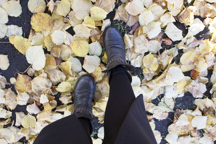 Low Section Human Leg Personal Perspective Real People Shoe Body Part Human Body Part Standing Lifestyles One Person Day Leaf Autumn Leaves Outdoors Human Foot High Angle View Human Limb Path Walking