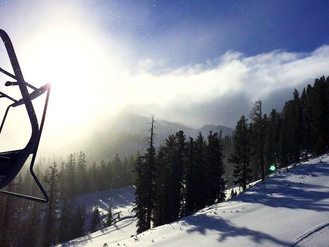 Morning chair rides Snow Winter Nature Mammothmountain Snowboarding I Phone Photography Outdoors Sky Trees My Year My View