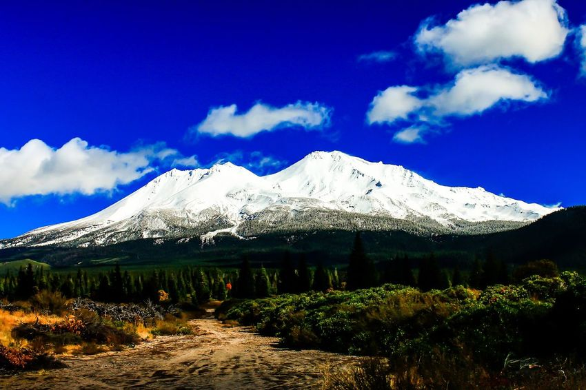 Road to shasta Mount Shasta Water Beauty In Nature Snowcapped Mountain Tree Grass Day Sky Outdoors No People
