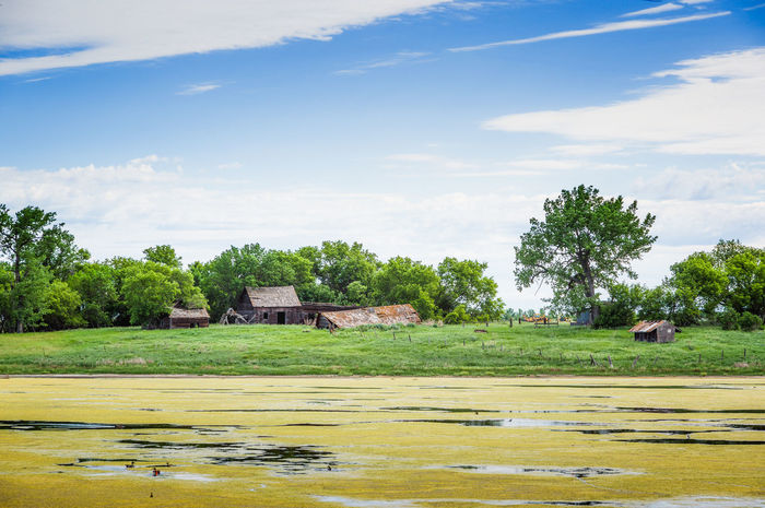 Abandoned Farm Architecture Beauty In Nature Day Desolate Flood Grass Landscape Nature No People Outdoors Scenics Sky Tranquility Tree Water