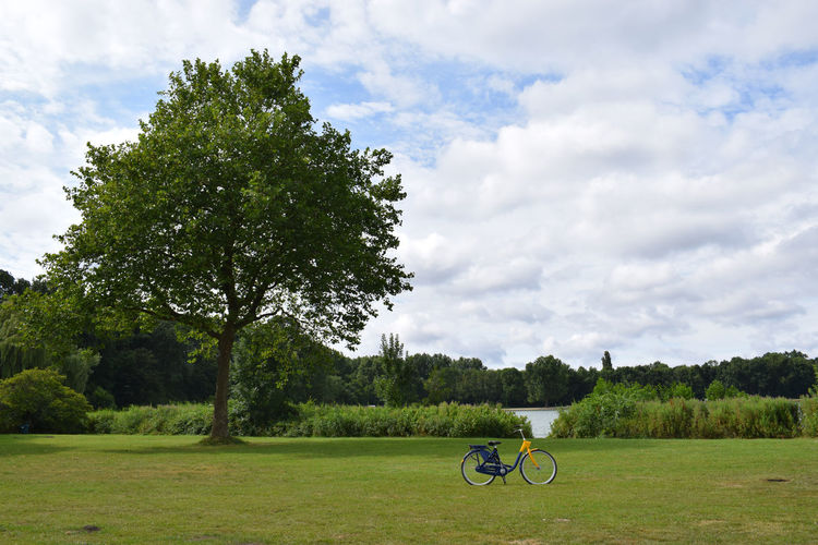 Summer in Netherlands Beauty In Nature Bicycle Cloud - Sky Day Environment Field Grass Green Color Growth Lake Land Landscape Mode Of Transportation Nature No People Outdoors Plant Scenics - Nature Sky Summer Tranquil Scene Tranquility Transportation Tree Wallpaper