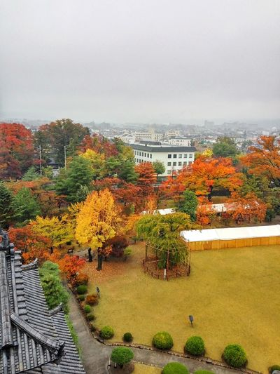 Matsumoto 紅葉 Momiji Autumn colors Autumn Leaves Lawn Grass Lawn In The Autumn Orange Leaves Rainy Day In Japan Natural Beauty Autumn Tree No People Travel Destinations Day Outdoors Cloud - Sky Landscape Architecture Red Scenics Storm Cloud Building Exterior City Beauty In Nature Nature Sky