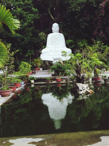 Buddah Statue Water Reflections