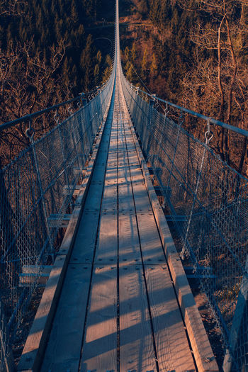 Geierley, Germany's longest suspension bridge Beauty In Nature Bridge Bridge - Man Made Structure Connection Footbridge Forest Geierley Germany Germany 🇩🇪 Deutschland Germany🇩🇪 GERMANY🇩🇪DEUTSCHERLAND@ Mörsdorf Nature Night No People Outdoors Path Path In Nature Pathway Pathways Scenics Suspension Suspension Bridge The Way Forward Tree