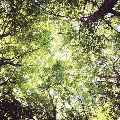 Relaxing Good Times Enjoying The Sun Natural