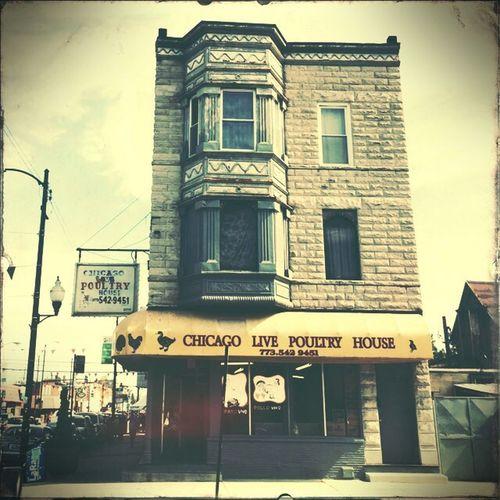 Chicago Live Poultry House. NEM Culture NEM Architecture NEM Street Cityscapes
