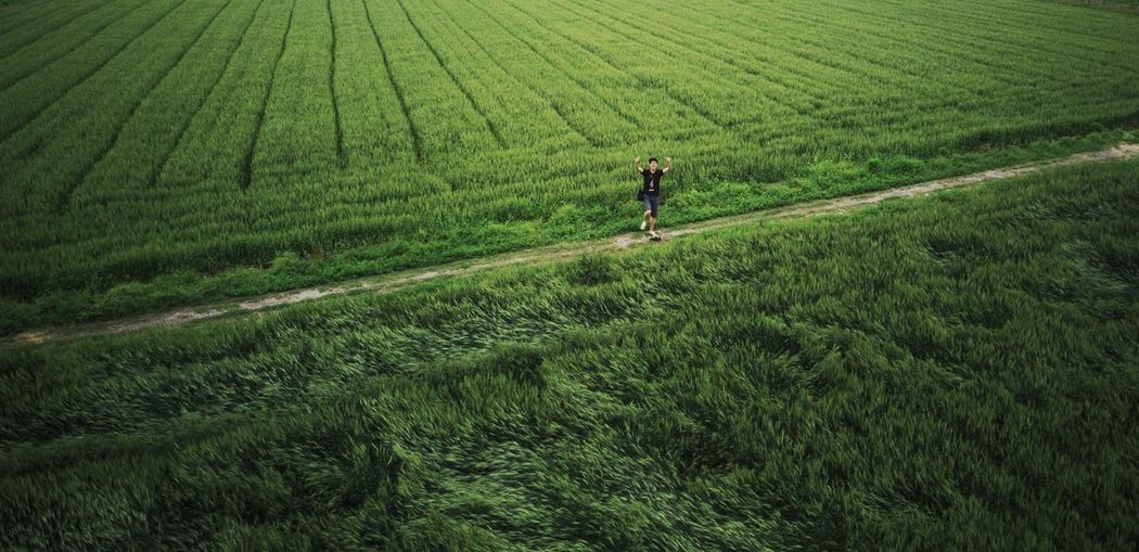 Woman standing in farmland