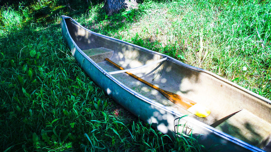 Canoe Country Life Grass Green Color Nature Northern Wisconsin Outdoors Water