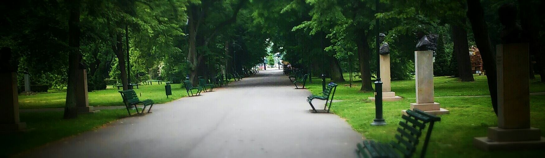 Park View Many Trees Fresh And Clean Rest & Relax Outside World