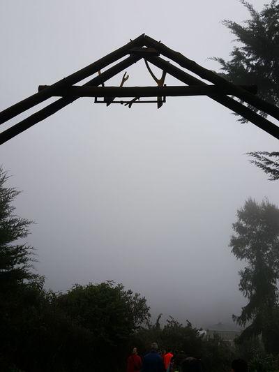Fog Foggy Foggy Morning Foggy Day Roof Red Detail Mystical Atmosphere Mystic