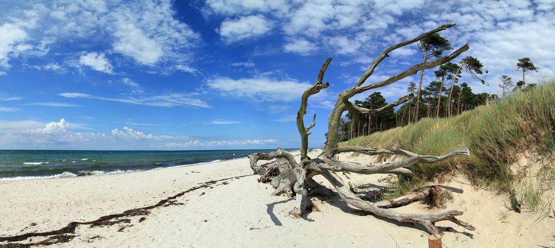 The Great Outdoors - 2015 EyeEm Awards Beach Weststrand Darß Ostsee