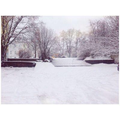 Winter Oldtown Vyborg Russia Taking Photos Snow
