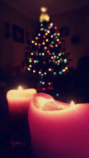 Christmas time Christmas Tree Christmas Decoration No People Illuminated