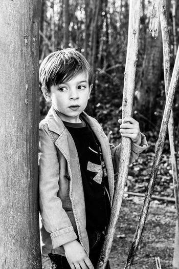 Portrait of boy standing on tree trunk