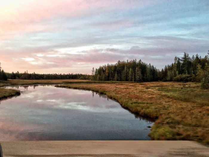 Outdoors Early Morning Autumn Nature Sky Water Beauty In Nature Reflection Scenics Tranquility Tranquil Scene Lake No People Cloud - Sky Tree Landscape Sunset Wilderness Area Clam Day Sunrise Marsh Inlet Fine Art Photography Scenery Shots